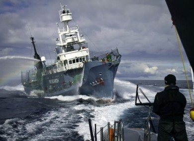 Image from 4 February 2011 released by the Sea Shepherd Conservation Society.