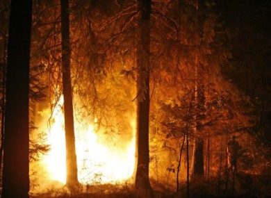 A forest fire edging close to the village of Kovrigino, near Moscow, Aug 13, 2010.