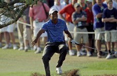 Tiger's in a walking boot and may be hurt worse than he's letting on