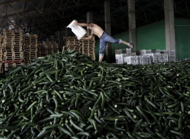 A man balances on a pile of cucumbers set aside for destruction at a warehouse in Bucharest, Romania.