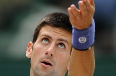 Eyes on the prize: Djokovic marches into Wimbledon finale