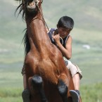 A boy breaks in a horse at Kyrgyzstan's Susamyr valley (AP Photo/ Maxim Shubovich)