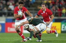As it happened: South Africa v Wales