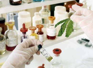 A lab analysis of cannabis samples of Sativex.