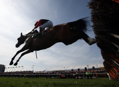 Celestial Halo in action last season. How will he fare this afternoon?