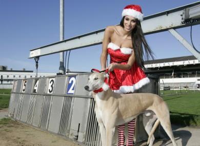 Georgia Salpa got in the festive mood for the Irish Greyhound Board last month.