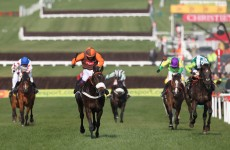 Long Run plugs out to boost Cheltenham chances