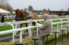 Mark Your Card: your best bets for the weekend's racing