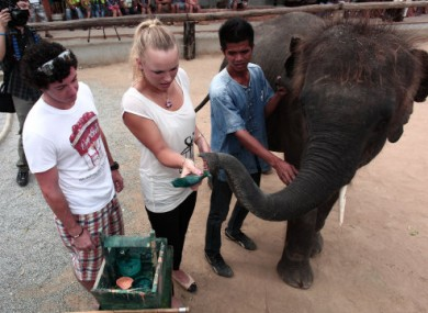 An elephant, Caroline Wozniacki, the elephant's handler and some bloke.