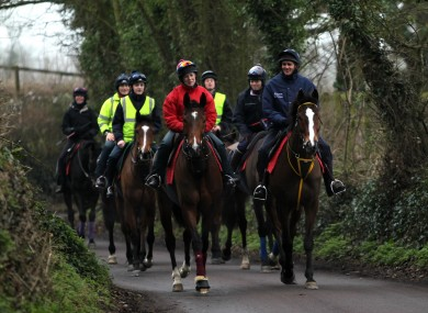 Kauto Star, front right, makes his way back from the gallops (file photo).