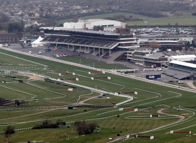 The Cheltenham festival is one of the most prestigious events in the horse racing calendar.