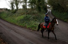 Nicholls: Kauto 'heading in the right direction'