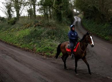 Kauto Star on the Ditcheat gallops (file photo).