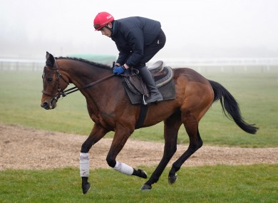 Hurricane fly and jockey Paul Townend on the Gallops.