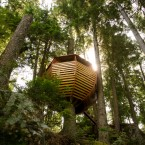 Unique view of treehouse from the ground. (Image via Joel Allen)