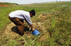 North Korea reports serious drought