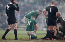 Heaslip and D'Arcy ruled out of final Test against the All Blacks