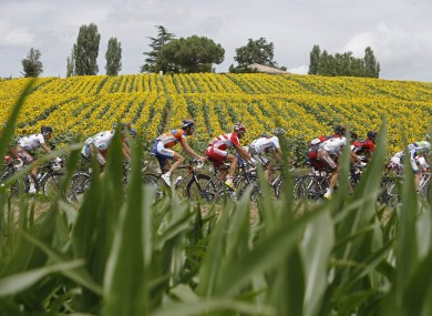 The pack roll on during today's stage.