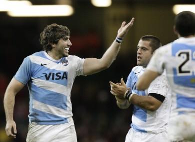 Juan Martin Fernandez Lobbe celebrates the win over Wales.