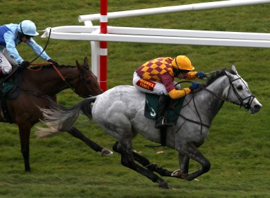 Dynaste, right, strikes for home in his win over Fingal Bay at Cheltenham earlier this month.