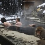 They let anyone into the hot springs nowadays. (AP Photo/Hiro Komae)