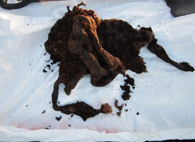 The bog body found in Co Meath.
