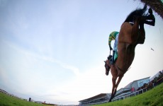 Mark Your Card: the best bets for today's Grade racing