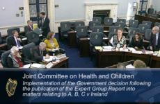 Oireachtas told: 'Ireland already allows a