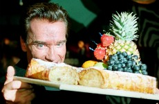 The Dredge: How much does it cost to see Schwarzenegger in the nip?