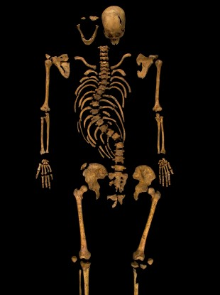 King Richard Iii Found In Car Park