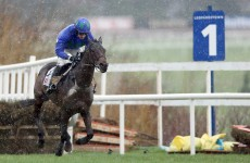 5 Irish horses that can pay the bills, bust the bailout at Cheltenham