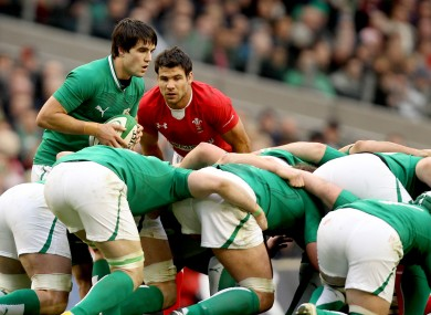 Mike Phillips (right) studies Conor Murray closely.