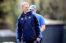 Joe Schmidt named as new Ireland head coach
