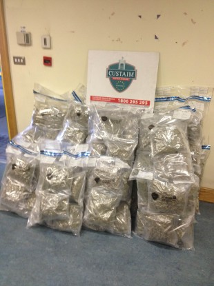 The cannabis haul from Rosslare today