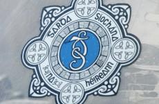 Concern over use of garda logo in online fraud