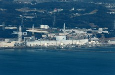Sun, sand, surf and radiation in the shadow of Fukushima