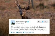 Tweet Sweeper: Chris de Burgh tells a hilarious joke