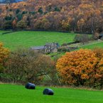A bucolic scene of autumn trees surrounding an old stone farmhouse in west Yorkshire, England.<span class=