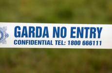 Pedestrian killed by car in Leitrim