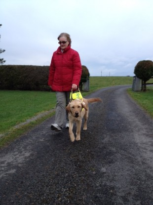 Monica Wims out walking with her guide dog Guinness.