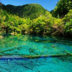 Clamber through Jiuzhaigou Valley, a remote region of northern Sichuan, China that stretches over 180,000 acres. It's best known for its Tibetan villages and multi-level waterfalls with colorful lakes that let you see perfectly to the bottom.<span class=