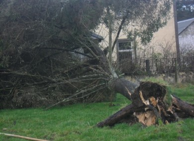 An example of the storm damage caused overnight