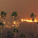 A wildfire burns in the hills just north of the San Gabriel Valley community of Glendora, California.<span class=