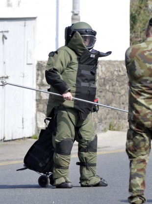 Members of the army bomb disposal team. (File)