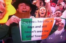Ireland fan cracks up entire stadium with rugby sign