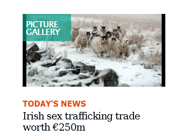 SexTraffickingSheep