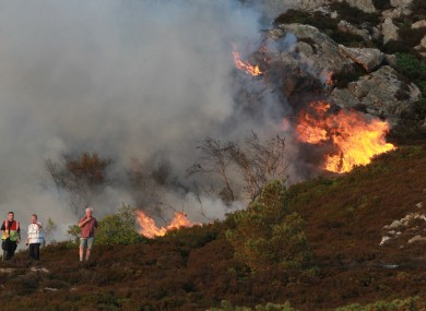 The gorse fire in Howth last summer.