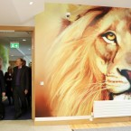 He seemed slightly nervous about a giant photo of a lion.<span class=
