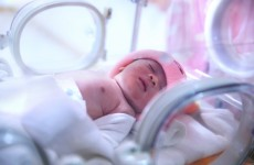 Contaminated food linked to death of baby and poisoning of 14 others