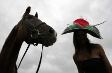 Day at the Races: Why do racehorses have such bizarre names?
